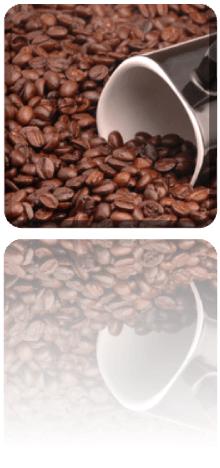 Starbucks Coffee, TATA