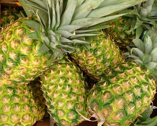 Fruity coupes… Pineapples and bananas for more fuel-efficient cars