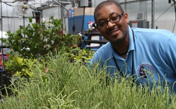 NASA's Biofuel Project to Help Solve World Fuel Needs