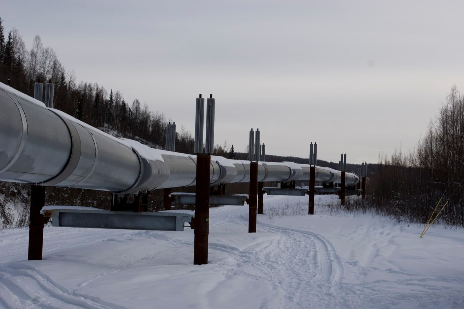 the keystone pipeline The keystone xl pipeline, proposed in the waning days of the bush administration, is now a household name in the united states, thanks to environmental activists who made it a political symbol the same is true of the athabasca tar sands in.