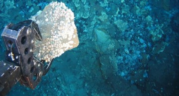 Deep-Sea Mining: Mineral Riches or Poverty Of Extinction