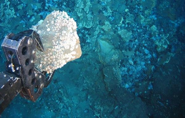 Sea – unknown mineral realm
