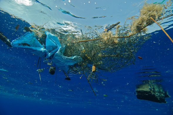 UNEP: Plastic Waste causes $ 13 billion damage to Marine Ecosystem