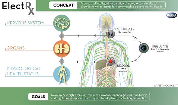 Electrical Therapies Will Be Used To Treat Deadly Diseases