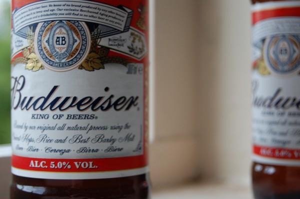 Budweiser_bottle_close-up