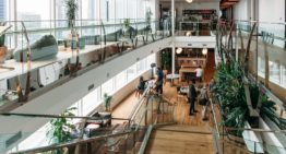 WeWork Makes Shared Office Spaces a Growing Trend