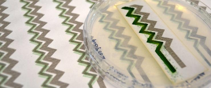 Solar-wallpapers