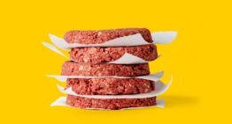 The Economics of Clean Meat Revolution