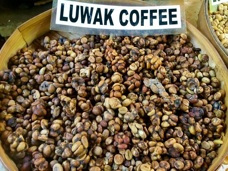 Kopi Luwak Sarah Ackerman most expensive coffee