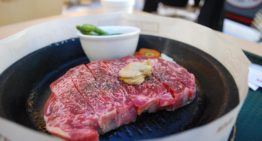 Most Expensive Steaks in the World! A Gastronome's Delight