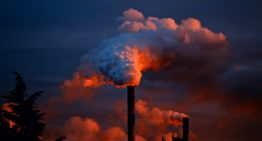 The World We Can Avoid By Removing Excess Carbon Dioxide