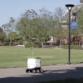 PepsiCoSnackDeliveryRobot