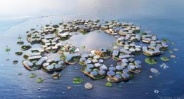 BIG's Oceanix City concept for floating cities can withstand hurricanes