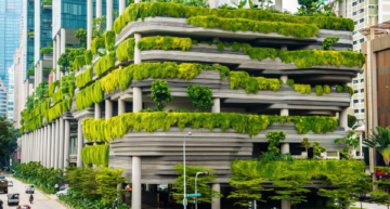 The World's Greenest Hotel Welcomes Eco-Conscious Tourists