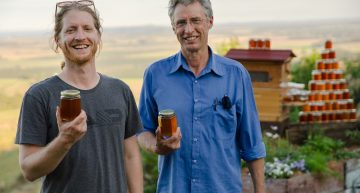 'Honey on Tap' Beehive Creates Buzz in Bee Industry