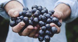 Apeel Sciences' Plant Coating Extends Shelf Life of Perishables