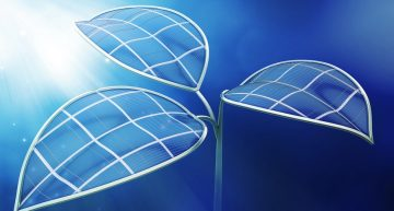 """Rice University Invents """"Artificial Leaf' To Harvest Hydrogen for Fuel Tech"""