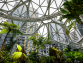 Redwood Materials Wins Investment Backing from Amazon Climate Fund