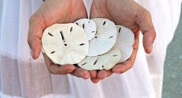 """Bahamas launches national digital currency """"Sand Dollar"""""""