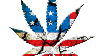 The Native American Marijuana Industry