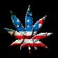 American Marijuana Industry