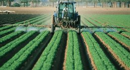 German Company Bayer to Create A Massive Seeds and Pesticides Sector