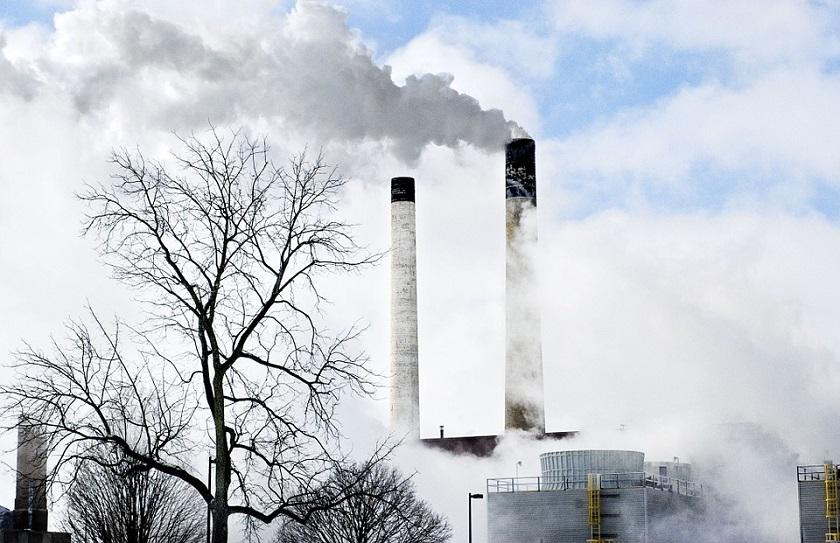 CO2 Inhaling Bacteria
