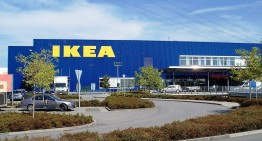IKEA Plans to Use Eco-Friendly Mushroom Packaging As a Replacement to Polystyrene