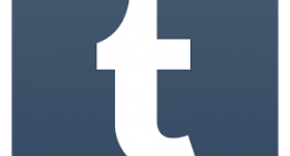 Tumblr Bringing Ads across all Blogs Allowing Bloggers to Generate Income