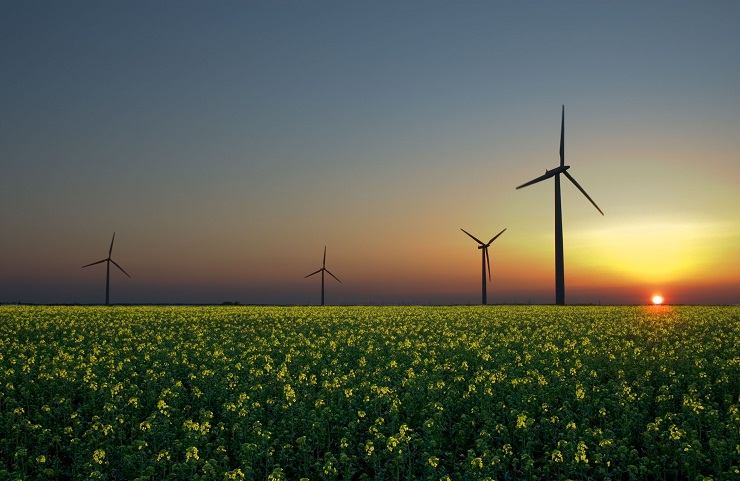 Ways to harness green energy
