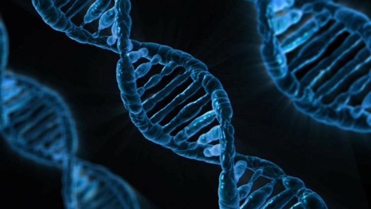 artificial intelligence sophia genetics